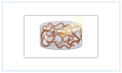 Combinatory Hydrogels